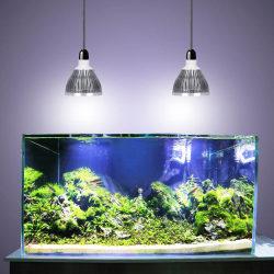 Лучшие светильники и лампы для аквариума