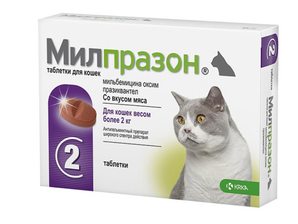 KRKA Милпразон таблетки для кошек более 2 кг