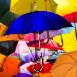 10 лучших производителей зонтов